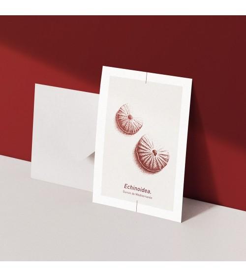 Carte postale Echinoidea - Piama Design