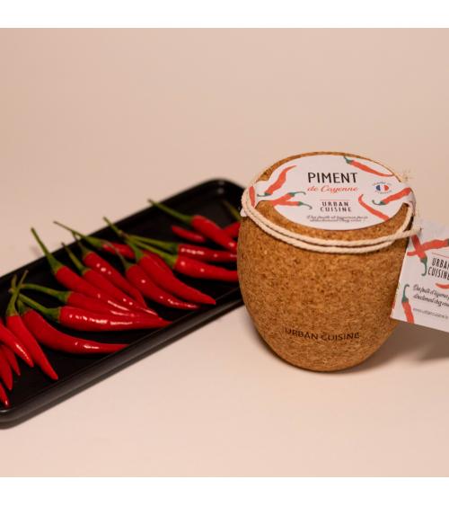 Piment de Cayenne en Pot  - Urban Cuisine