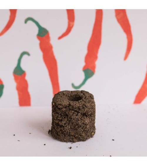 Piment de Cayenne Motte - Urban cuisine