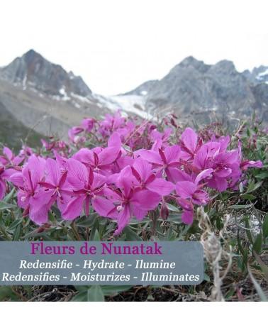 Sérum Jeunesse aux fleurs arctiques Neige éternelle - Polaar